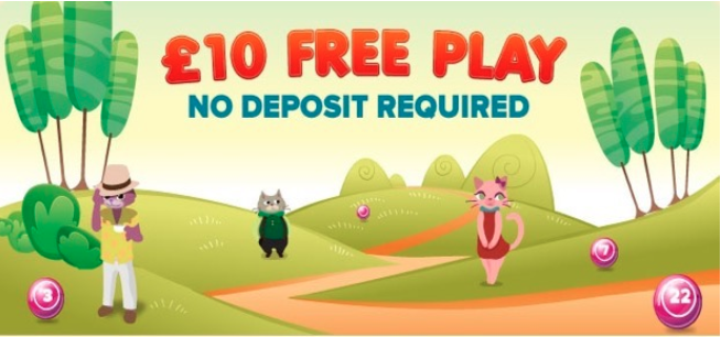 Kitty Bingo £10 Free Bingo No Deposit