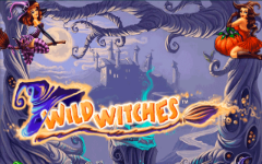 Wild witches slot image